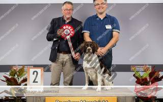 Eva 2e Nederlandse Rassen en Best of Breed